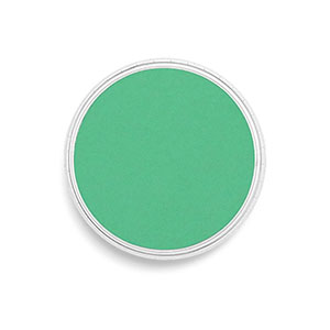 PanPastel® - 6405 Permanent Green